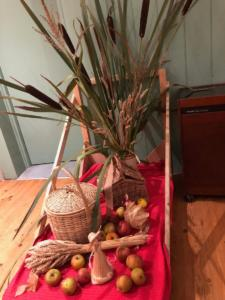Harvest Supper Oct 2019 (3)