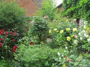 Open Gardens (18)