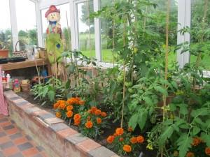 Open Gardens (25)