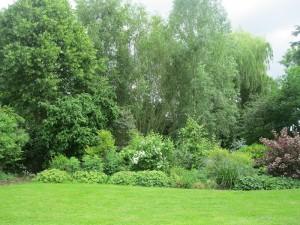 Open Gardens (27)