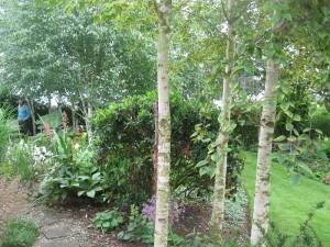 Open Gardens (32)