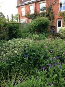 Open Gardens (8)